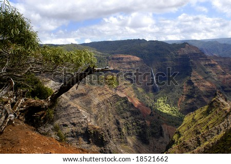 Waimea Canyon on Kauai, Hawaii has a waterfall called Waipoo.  Dead tree trunk leans in front of photo. - stock photo