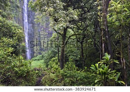 Waimoku Falls on the Pipiwai trail, Kipahulu state park, Maui, Hawaii - stock photo