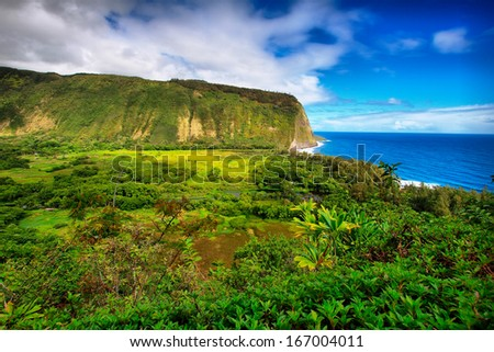 Waipio Valley view in Big island, Hawaii - stock photo