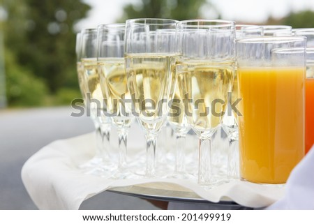 Waiter standing with tray of champagne glasses and other beverages. Out of focus trees in the background.