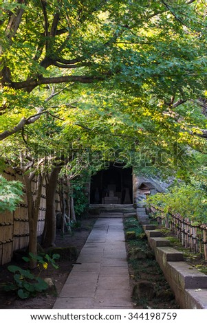 Walk Way in a Japanese garden at the temple  - stock photo
