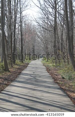 Walk With Me - stock photo
