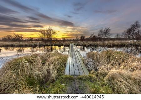 Walking bridge through brown vegetation in winter landscape in dutch wetland - stock photo