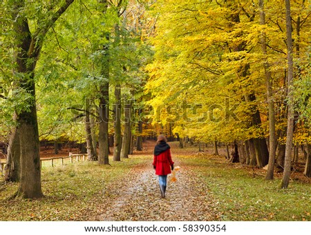 Walking in autumn park - stock photo
