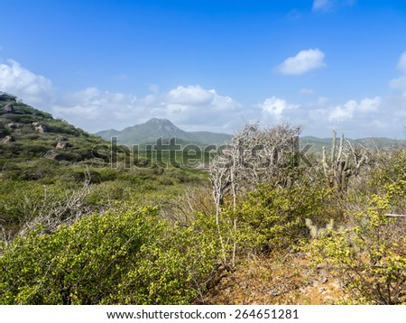 Walking in Christoffel National park - on the Caribbean island of Curacao