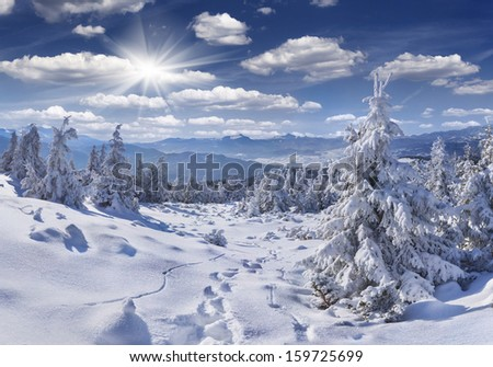 Walking in deep snow in the Carpathian mountains - stock photo