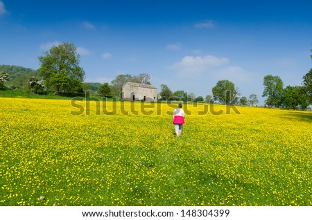 Walking in the country meadows in Wensleydale. UK - stock photo
