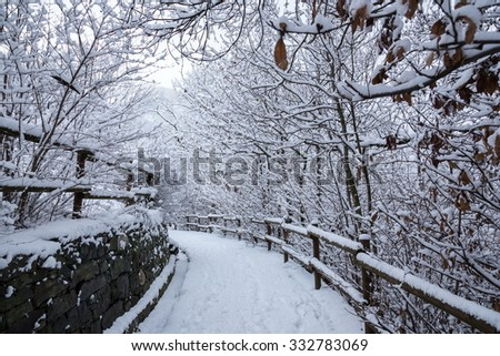 walking in the snow in winter time - stock photo