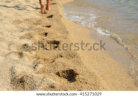 Walking legs leaving traces on sandy sea shore - stock photo