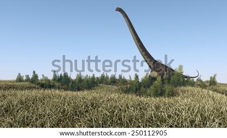 walking mamenchisaurus - stock photo