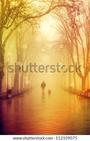 Walking men with dog in fog - stock photo