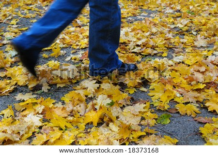 walking on golden leaves - stock photo
