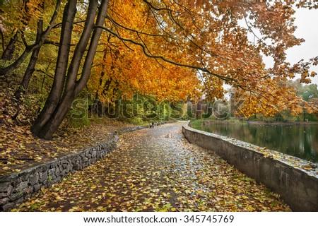 Walking path in autumn park - stock photo