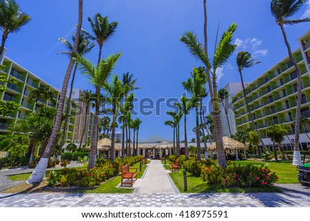 Walking path with palm trees at tropical beach