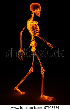 walking skeleton by X-rays in red. 3D image. - stock photo