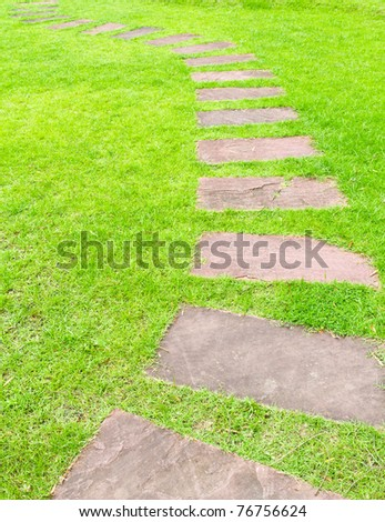 walking stone on green grass - stock photo