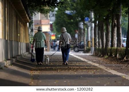 Walking the dog - stock photo