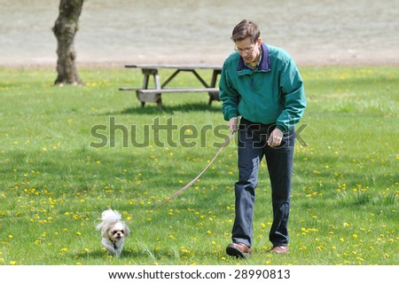 Walking The Dog - A man walking with his dog in the park on a sunny spring day. - stock photo