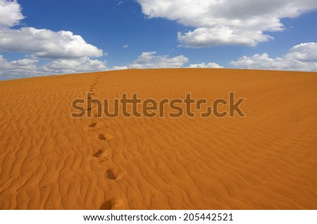 Walking through a wild  desert - stock photo