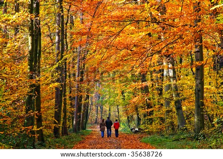 Walking through autumn park - stock photo