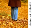 Walking through the autumn leaves - stock photo