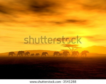 Walking-Tour of african elephants into the sunset - stock photo