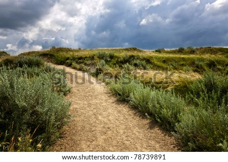 Walking trail in Badlands with dramatic sky in Dinosaur provincial park, Alberta, Canada