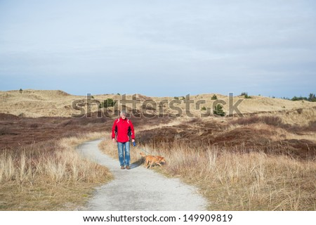 Walking with the dog in wintertime in the dunes - stock photo