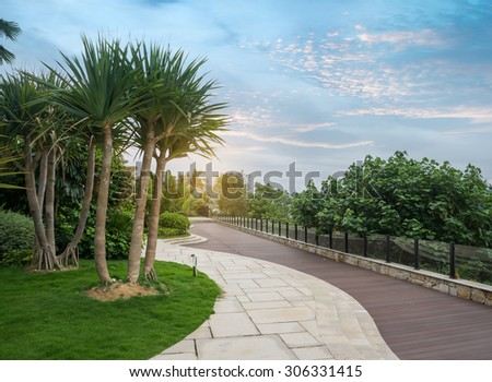 Walkway in a beautiful Park with Palms - stock photo