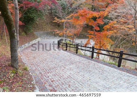 Walkway in autumn, Kiyomizudera temple, Kyoto, Japan.