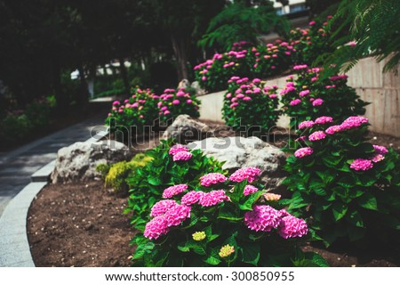 Walkway in the park with lush beautiful flowers, stones and trees - stock photo