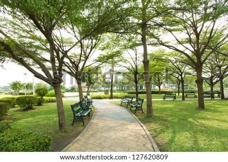 Walkway into garden - stock photo
