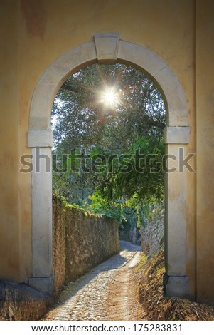 walkway through arched door; ancient footpath with view to olive tree with sunburst.