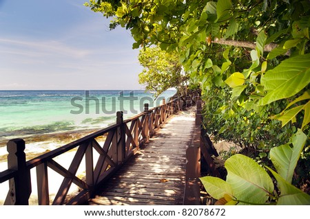 Walkway through beautiful trees on a tropical island