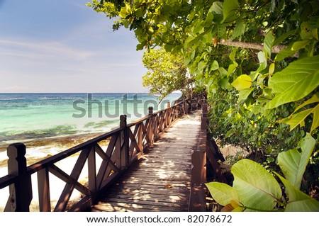 Walkway through beautiful trees on a tropical island - stock photo