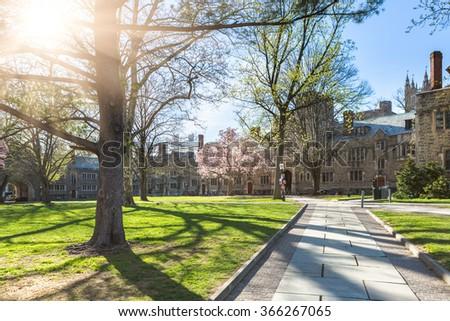 walkway through princeton university, USA. - stock photo