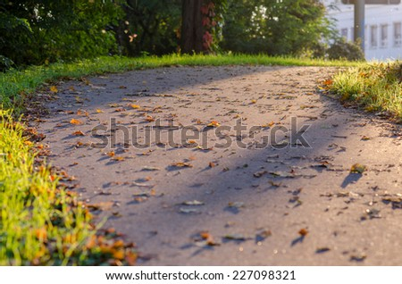 Walkway with leaves - stock photo