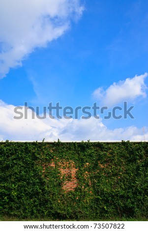wall and blue sky