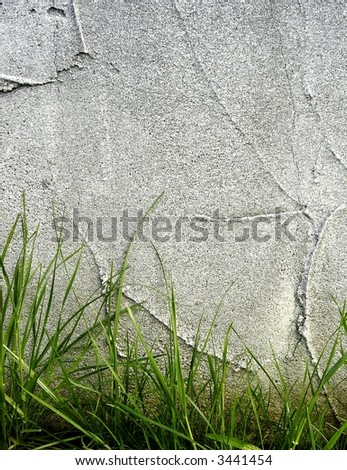 wall and grass background - stock photo