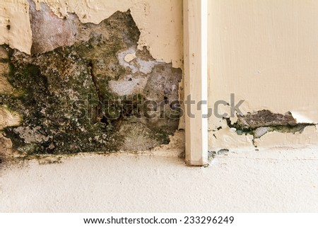 Wall corner decay weathered by water erosion for a long time. - stock photo