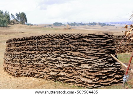 Wall of sundried cow dungs piled together in herringbone shape-boundary of a household in a small hamlet of the Oromo people by the Debre Sina-Addis Ababa route. Nth.Shewa zone-Oromia region-Ethiopia.