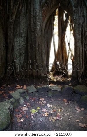 Wall with gothic door full of glowing light in a Natural Park.