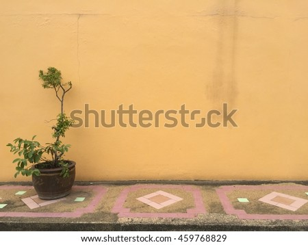 Wall yellow background