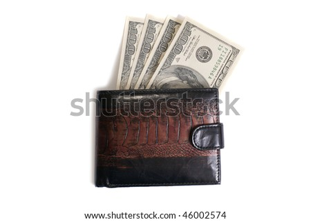 Wallet with dollars isolated on white background