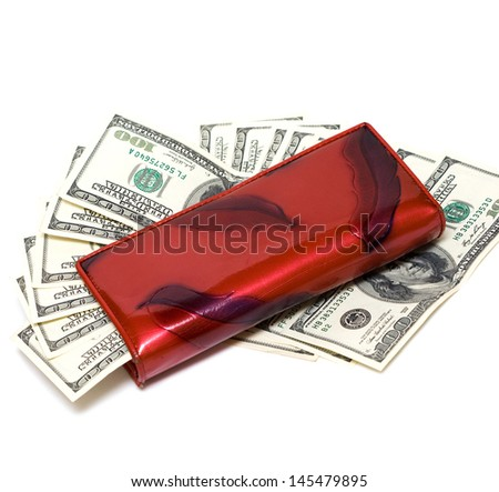 wallet with one hundred dollars  - stock photo