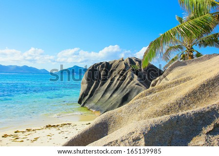 Wallpaper Coconut Beach  - stock photo