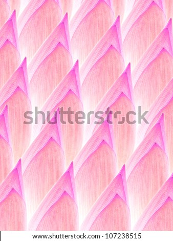wallpaper of bud lotus texture - stock photo