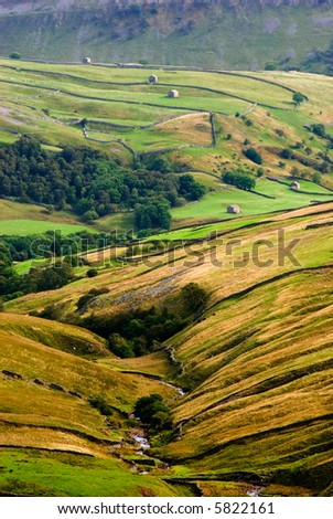 Walls and barns in Swaledale, Yorkshire Dales National Park, North Yorkshire, United Kingdom