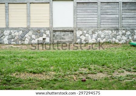Walls on the lawn,Fresh spring green leaves plant over brick wall background  - stock photo