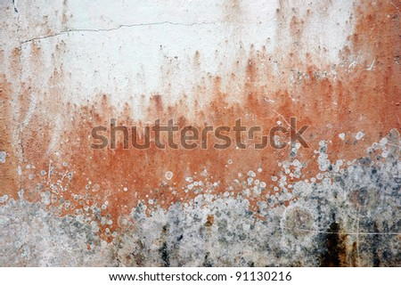 walls with paint colors that have faded and mossy - stock photo